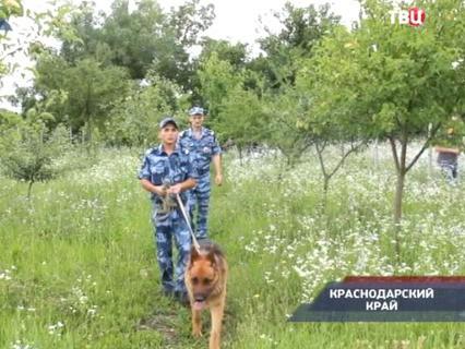 """""""Петровка, 38"""" Эфир от 13.10.2015 21:45"""