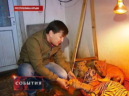 """""""События"""". Эфир от 01.12.2015 22:00"""