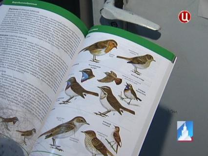 ГОРОД НОВОСТЕЙ Эфир от 27.05.2013