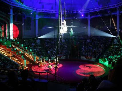 Представление в цирке
