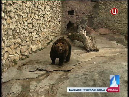 ГОРОД НОВОСТЕЙ Эфир от 29.03.2013