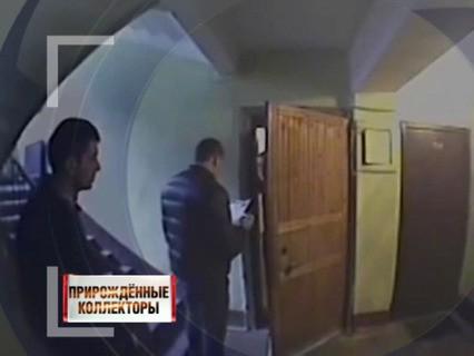 """""""Прирождённые коллекторы"""""""