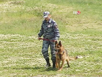 """""""Петровка, 38"""". Эфир от 19.06.2016 00:45"""