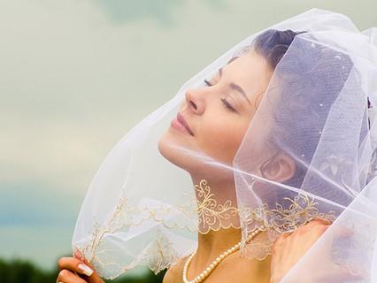 Доказательства вины. Невесты