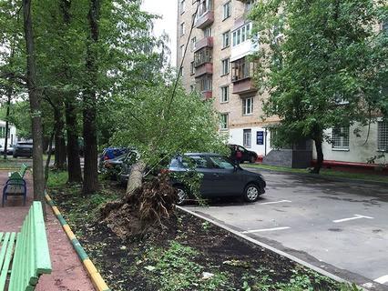 Последствия грозы в Москве