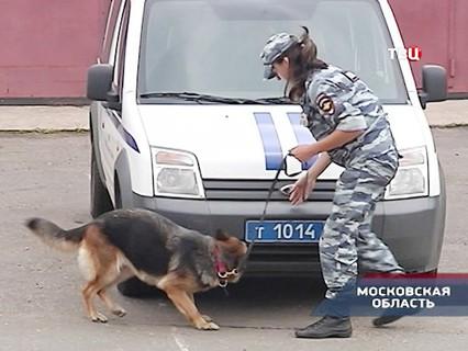 """""""Петровка, 38"""". Эфир от 22.07.2016 21:45"""