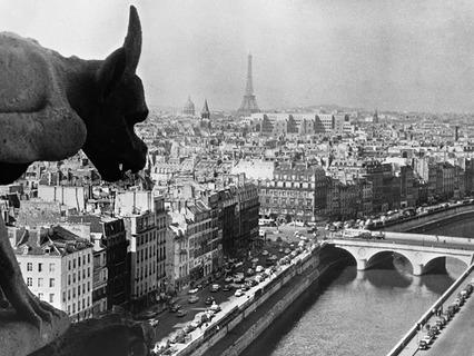 Вид Парижа с Собора Парижской Богоматери