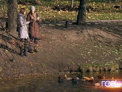 """""""Город новостей"""". Эфир от 24.10.2016 14:50"""