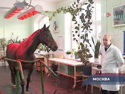 """""""Петровка, 38"""". Эфир от 23.12.2016 02:55"""