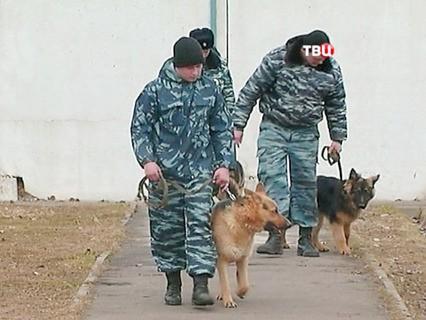"""""""Петровка, 38"""". Эфир от 23.04.2017 00:25"""
