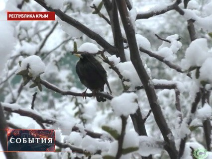 """""""События"""". Эфир от 24.04.2017 11:30"""