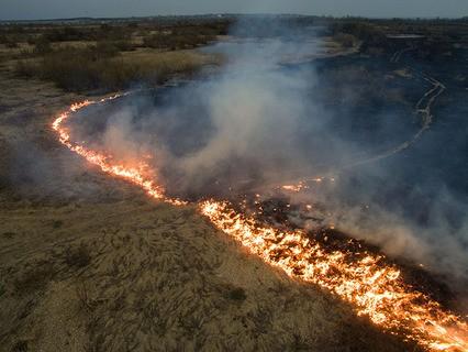 Полевые пожары в Колыванском районе Новосибирской области