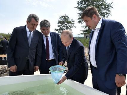 Владимир Путин принимает участие в церемонии выпуска в Байкал молоди омуля