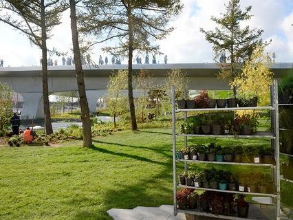 """Рабочие сажают цветы в природно-ландшафтном парке """"Зарядье"""""""