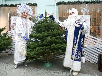 В Москве начали работать ёлочные базары