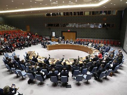 Совбез ООН единогласно одобрил резолюцию по гуманитарной паузе в Сирии