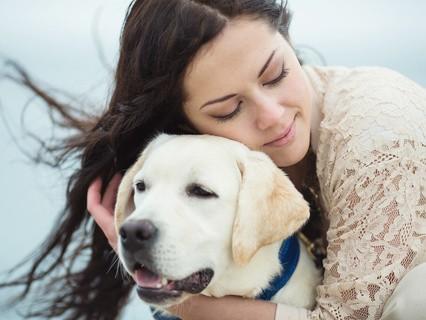 """Наши любимые животные. """"Как отогреть бездомное собачье сердце?"""""""