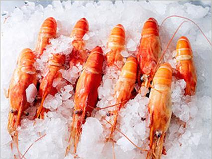 Без обмана. Отмороженная еда. Мясо и рыба
