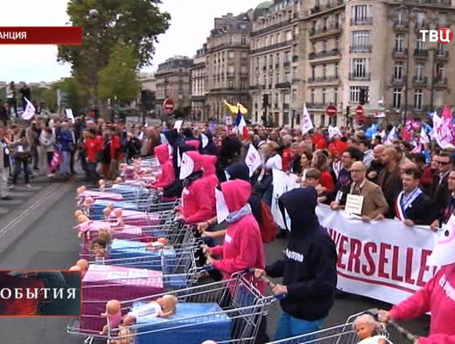 Акция протеста против суррогатного материнства и искусственного оплодотворения для однополых пар во Франции