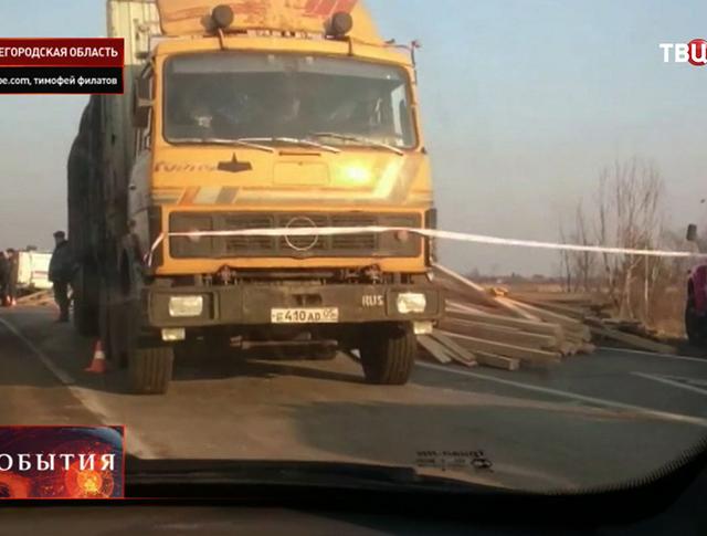ДТП под Нижним Новгородом с участием автобуса и лесовоза