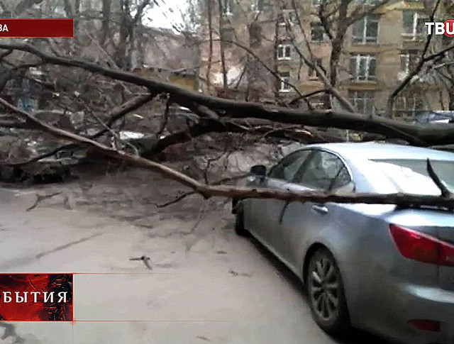 Последствия сильного ветра в Москве