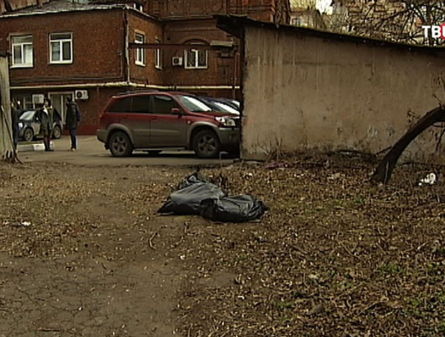 Место убийства собак