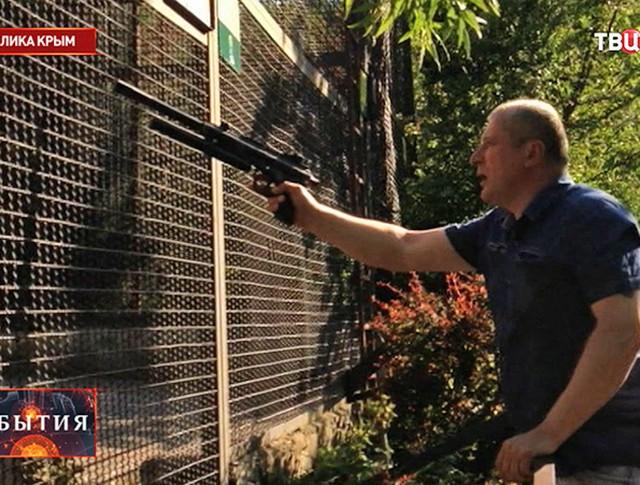 Ветеринар стрелает в обезьяну