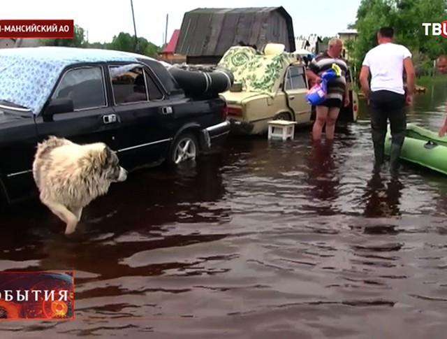 Наводнение в Ханты-Мансийске