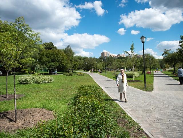 Благоустройство парков и дворовых территорий