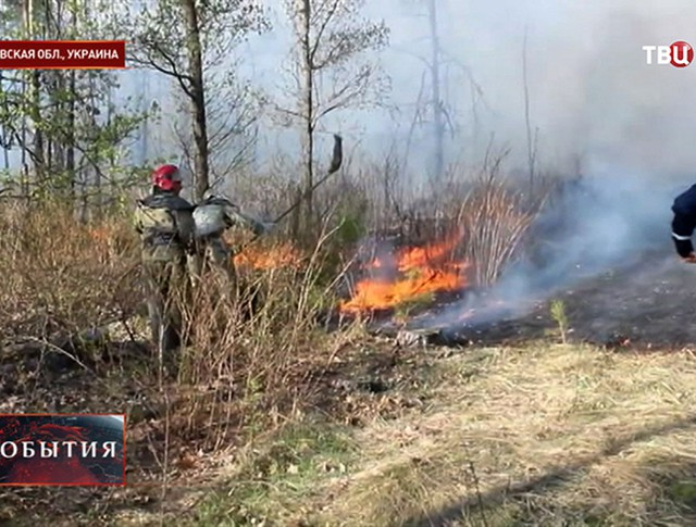 Лесной пожар на Украине