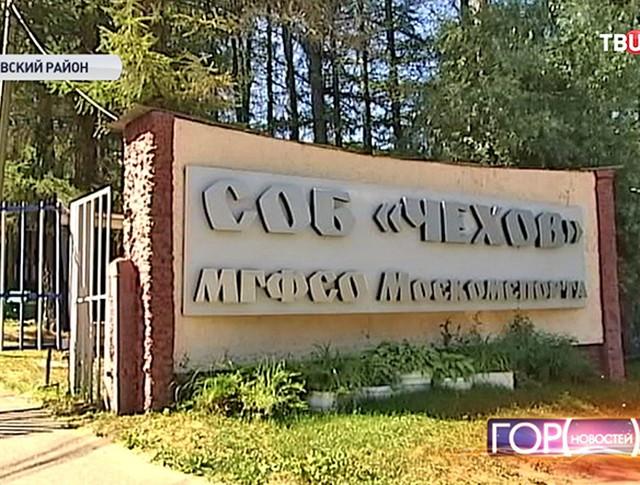 """СОБ """"Чехов МГФСО Москомспорта"""""""