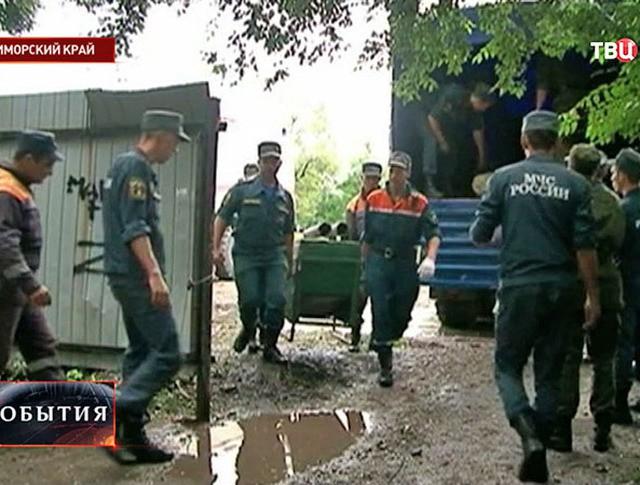 Эвакуация зверей в Приморском крае
