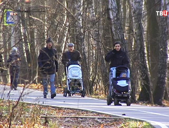Родители с колясками гуляют в парке