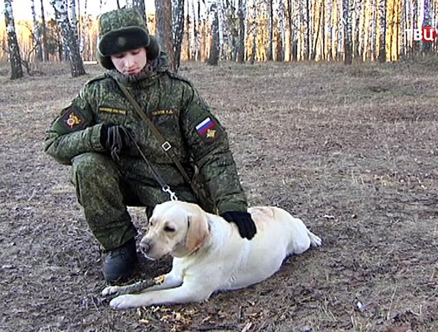Кинологический центр Российской армии