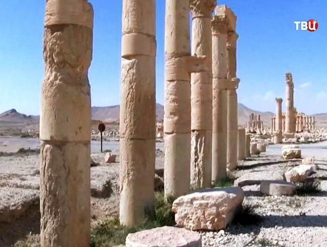 Древние колонны Пальмиры