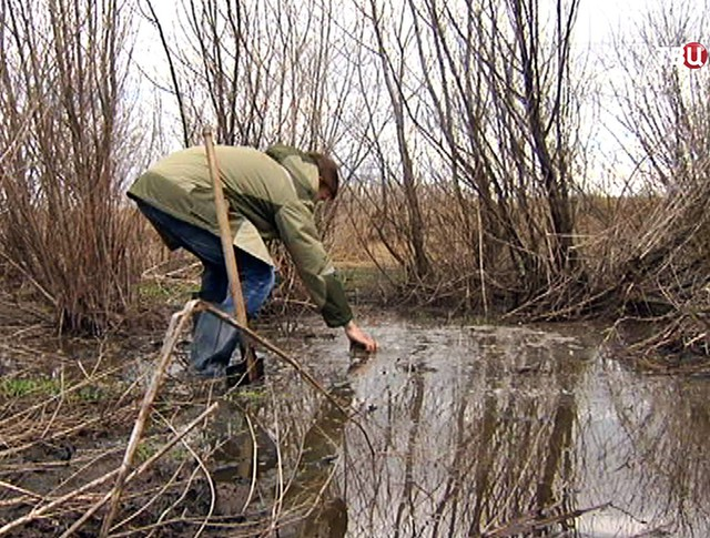 Экологи берут пробу воды