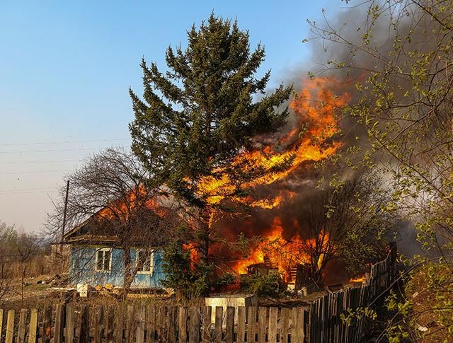 Последствия природных пожаров в Амурской области