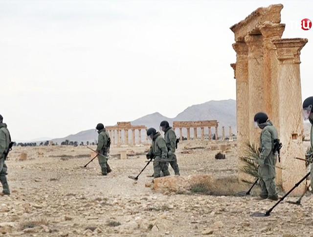 Саперы работают в исторической части Пальмиры