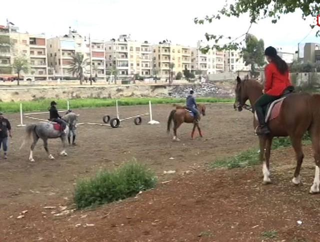 Конезавод в Алеппо
