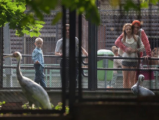 Посетители Московского зоопарка