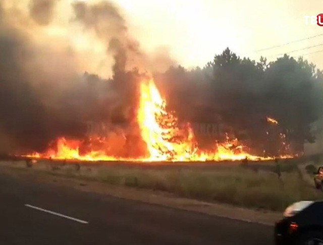 Пожар в Ростовской области