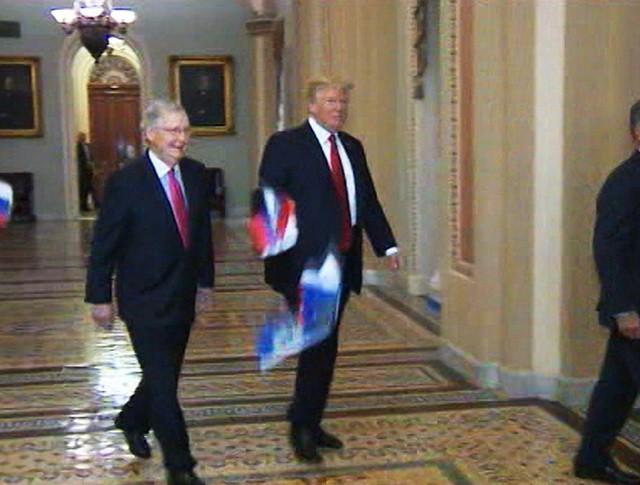 Трампа забросали российскими флажками в здании Конгресса США