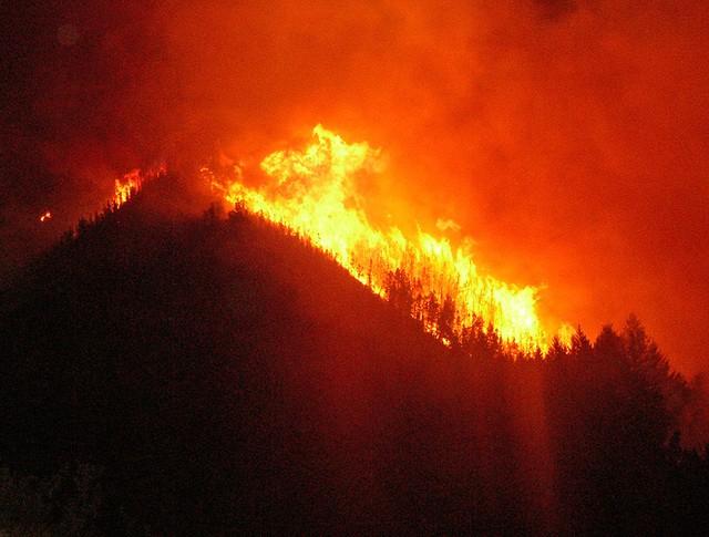 Лесные пожары в США подошли к жилым домам