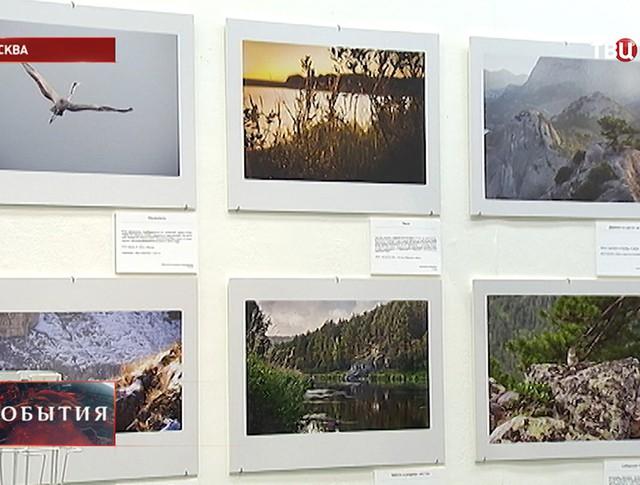 Конкурс юных фотографов