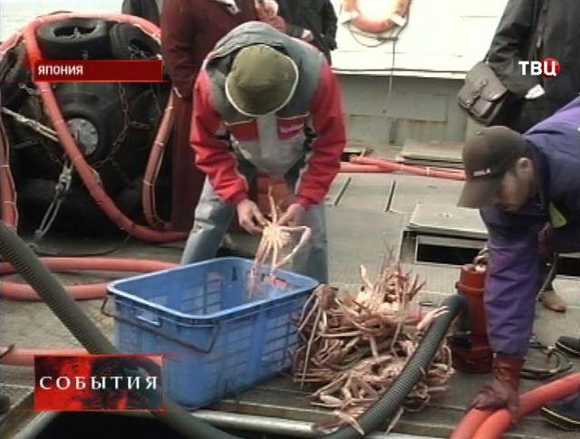 Роспотребнадзор усиливает контроль за рыбой с Дальнего Востока