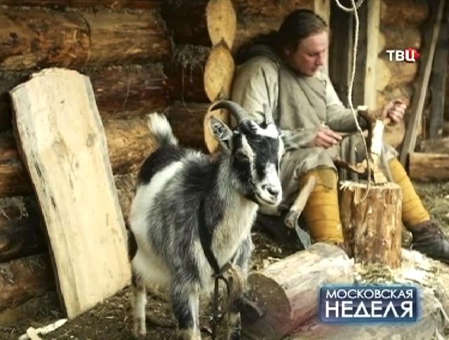 Москвич ушел жить в хутор под Сергиевым Посадом