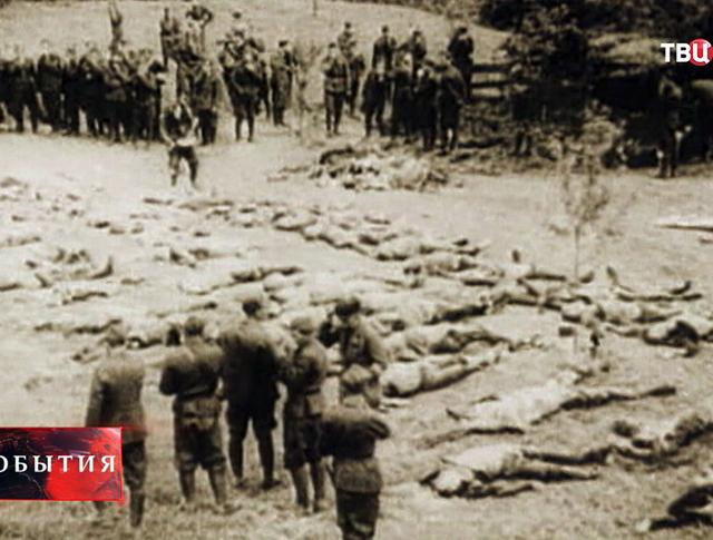 Кадры военной хроники - участники УПА расстреливают мирных жителей