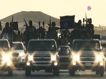 """""""Подсесть на ИГИЛ"""""""