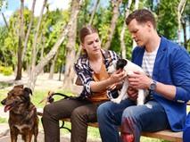 """Воспитание и выгул собак и мужчин. Анонс. """"Воспитание и выгул собак и мужчин"""""""
