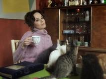 """Новогоднее кино. Анонс. """"Отдам котят в хорошие руки"""""""
